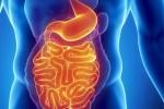Основные симптомы дисбактериоза кишечника