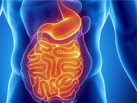 Основные симптомы дисбактериоза кишечника у взрослых людей