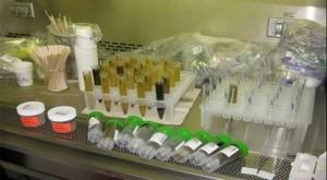 Расшифровка анализов на дисбактериоз